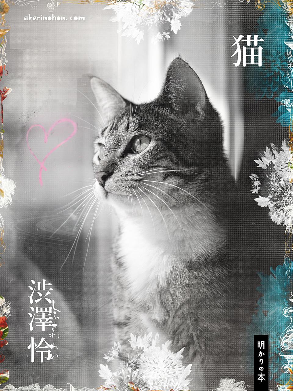 0000 - 猫 渋澤怜