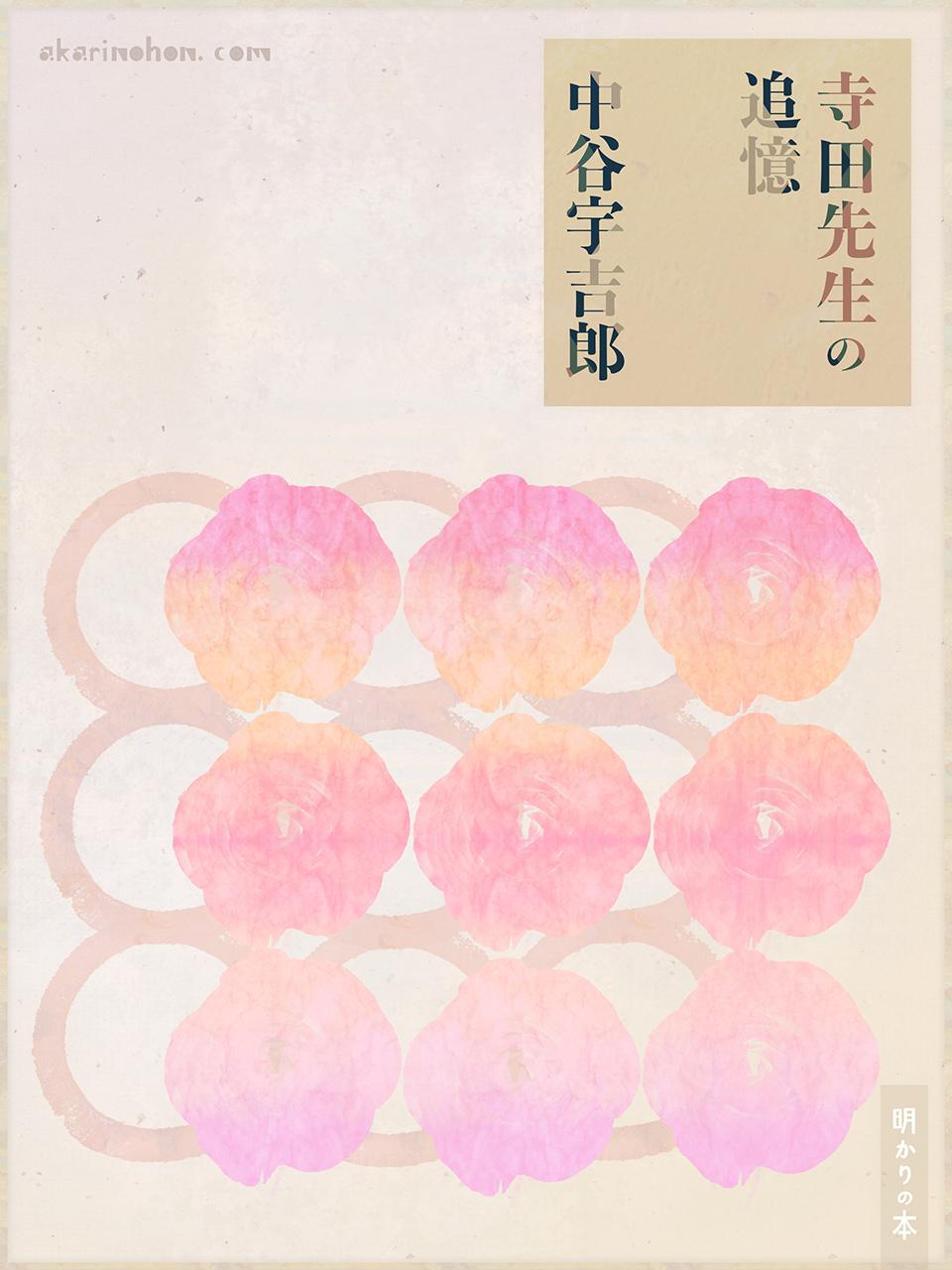 0000 - 寺田先生の追憶 中谷宇吉郎