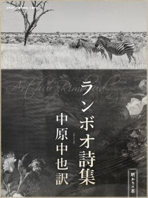 bookimage01901sono97 300x400 - 火繩銃 江戸川乱歩
